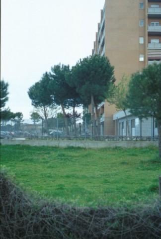 Area 1014: il terreno dove la Carta dell'Agro segnala la presenza di un'area di frammenti fittili, oggi non più esistenti