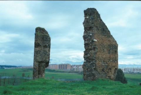 Area 1019: i ruderi delle due strutture posti ad angolo di 45°
