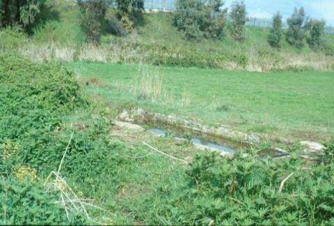 Area 1020: il fontanile