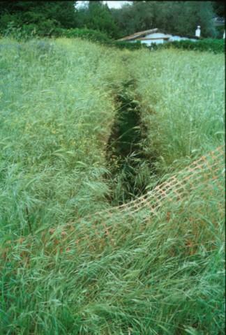 Area 1041: la trincea che rende visibile l'ingresso alla cava