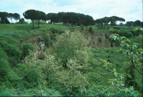 Area 1042: la balza tufacea che ospita l'ingresso della grotta
