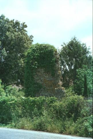 Area 1046: il sepolcro compreso tra la folta vegetazione
