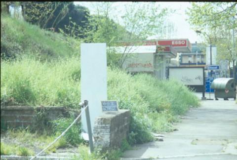 Area 1062: il risparmio di terreno coperto da vegetazione che potrebbe indicare la localizzazione del sepolcro