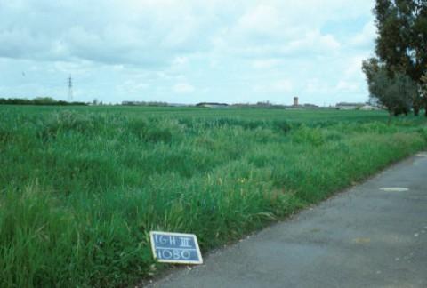 Area 1080: il campo coltivato sul quale dovrebbe insistere l'area di frammenti