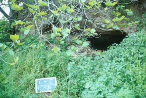 Area 1095: l'ingresso della grotta