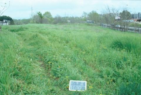 Area 1100: il terreno risparmiato dalla costruzione dell'autostrada A24