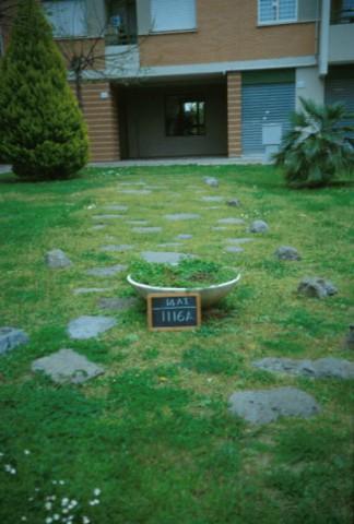 Area 1116: il tratto basolato asportato dalla possizione originaria e riposizionato all'interno di un cortile condominiale