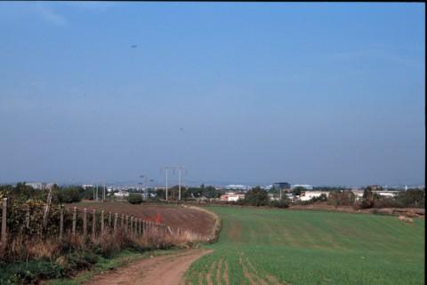 Area 1151: i campi a N di Case Calde