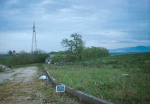 Area 1167: il viale d'accesso alla proprietà
