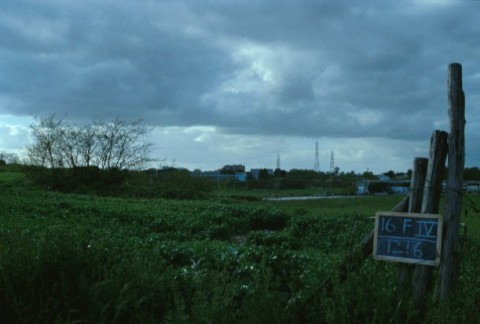 Area 1216: il terreno recintato e lasciato a pascolo dove si intravedono resti di antiche cave