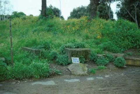 Area 1217: i blocchi di tufo