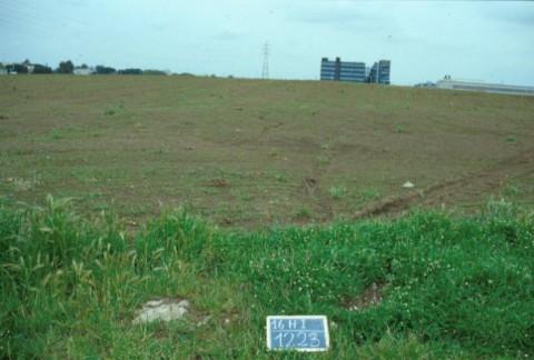 Area 1223: il terreno dove dovrebbero insistere i frammenti fittili
