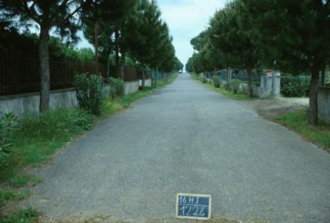 Area 1224: la strada interna al complesso di villini che oblitera l'area interessata dai frammenti fittili