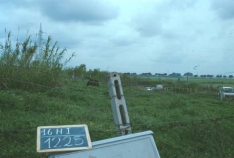 Area 1225: il terreno dove la Carta dell'Agro segnala la presenza di strutture murarie