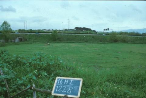 Area 1228: il terreno dove la Carta dell'Agro segnala la presenza di una villa e di una necropoli, vista da O