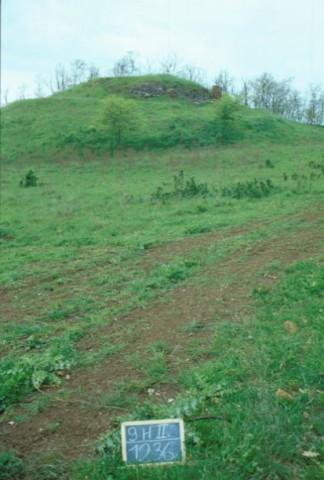 Area 1236: il poggio che ospita i resti del castello
