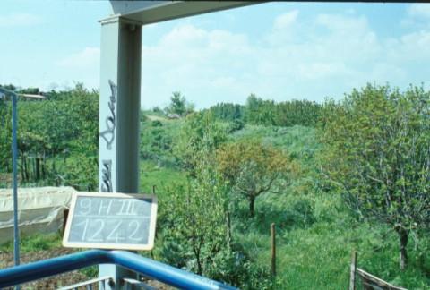 Area 1242: la zona dove la Carta dell'Agro segnala la presenza di tombe