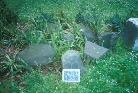 Area 1331: i basoli presenti nel giardino della Casa Generalizia della Congregazione Missionaria delle Serve dello Spirito Santo