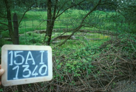 Area 1340: il sepolcro A visto dall'esterno della recinzione