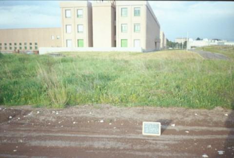 Area 1353: il terreno segnalato dalla Carta dell'Agro per la presenza di frammenti fittili
