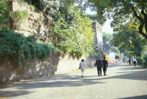 Area 156: il tratto AD delle mura Aureliane