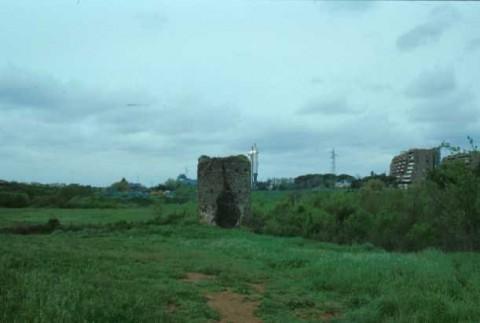 Area 1580: panoramica del terreno su cui insiste la struttura