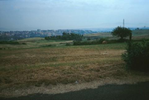 Area 2173: il terreno su cui insiste l'area di frammenti fittili