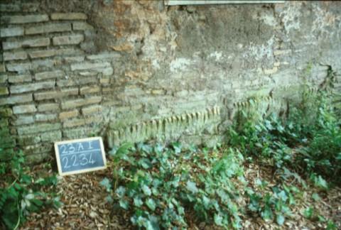 Area 2234: la muratura della foresteria della villa in cui si notano resti di muratura antica