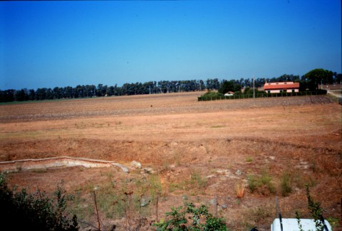 Area 2628: i resti deglia antichi depositi e magazzini relativi all'antico porto fluviale di Ostia