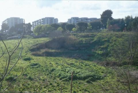 Area 306: i resti della villa visti da via Andrulli