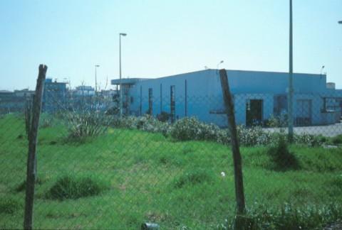 Area 321:il campo dove si trovano i frammenti fittili