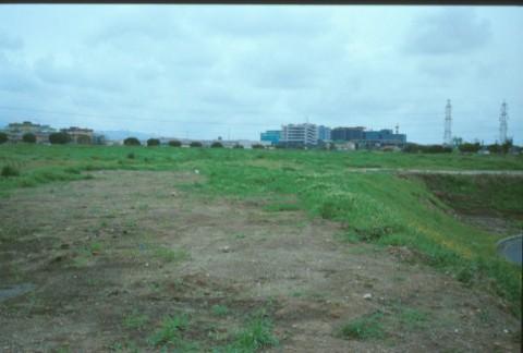 Area 338: il terreno dove si trovano i frammenti di basalto