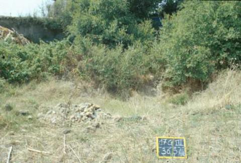 Area 3654a: il terreno e l'ingresso del cunicolo