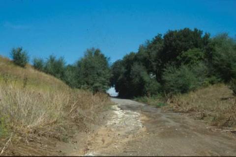 Area 3753: la tagliata stradale pertinente all'antico tracciato della via Collatina