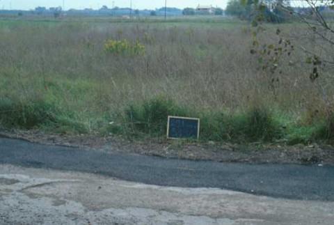 Area 3834: il terreno dove la Carta dell'Agro segnala la presenza di frammenti ceramici