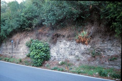 Area 3914: i resti di muratura visti dal via Anagnina