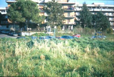 Area 4073: il campo lungo via M. Simone