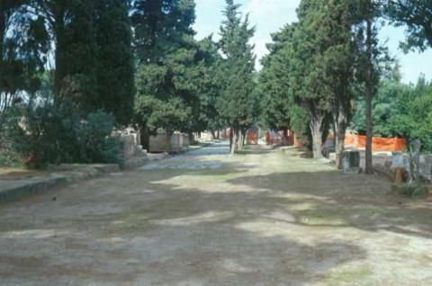 Area 4103: l'ingresso alla necropoli di Porto