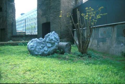 Area 4209: un frammento di travertino forse raffigurante una testa leonina