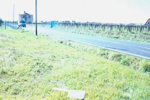 Area 4419: le recinzioni che impediscono l'accesso ai terreni