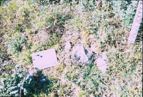 Area 4420: i frammenti di basoli su via Valle Caia