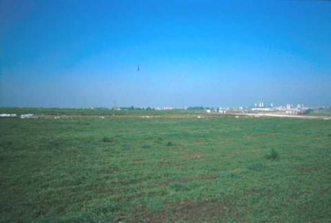 Area 4668: il terreno dove la Carta dell'Agro segnala la presenza di frammenti fittili
