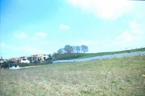 Area 4701: il terreno, all'interno del parco Tor de Cenci, dove la Carta dell'Agro segnala la presenza di tracce di una villa di età romana