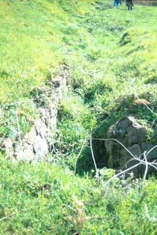 Area 4733: il buco, presente sulla sommità del poggio, che lascia presupporre la presenza di strutture sepolte