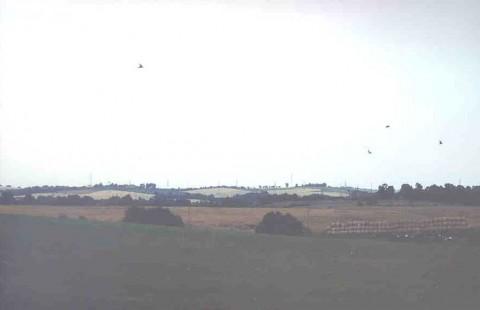 Area 5020: il terreno dove si trova Tor S.Giovanni