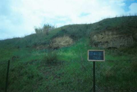 Area 966: l'ingresso dei cunicoli