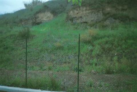 Area 966: il terreno dove la Carta dell'Agro segnala la presenza di frammenti fittili