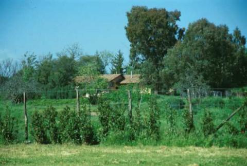Area 985: il terreno dove la Carta dell'Agro segnala la presenza di una cisterna e di una grotta