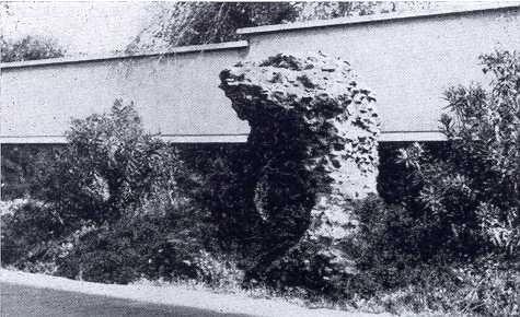 Sepolcro sulla via Prenestina a Tor Sapienza (Quilici 1974, p.286, f.584)